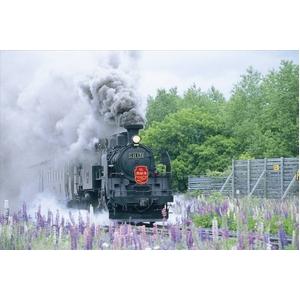 風景専門店あゆわら 《DVD》鐵路の響演〔SL・蒸気機関車の風景〕〔3枚組〕 - 拡大画像