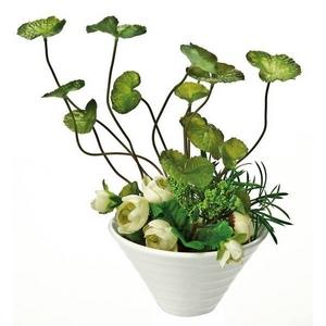 《人工観葉植物》クリエイティブフラワーアート センテラ・アジアチカ アレンジ - 拡大画像