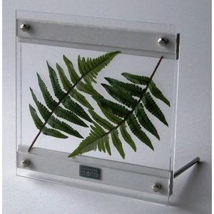 風景専門店あゆわら 《リーフパネル》SMART GREEN 0102(アジアンタム) - 拡大画像