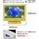 ダイナコネクティブ DVDプレーヤー内蔵19V型地上デジタル液晶テレビ DY-19SDD200Y イエロー【エコポイント対象】 - 縮小画像3