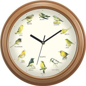 掛け時計/ウォールクロック 【直径約320×52mm】 重さ約535g 単3電池対応 『小さな野鳥の大きな壁掛け時計』 〔リビング〕