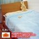 あったか発熱毛布 ホットテックス(HOT TEX) ニューマイヤー毛布 シングル ブルー - 縮小画像1