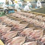 沼津「奧和」のひもの詰合せ7種(18枚)あじ、さんま、かます、金目鯛、えぼ鯛、ほっけ、さば border=