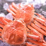【身入り抜群のA級品!】カナダ産ボイルズワイガニ姿・約500g×2尾 冷凍ズワイ蟹