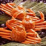 【身入り抜群のA級品!】カナダ産ボイルズワイガニ姿・約600g×3尾 冷凍ズワイ蟹