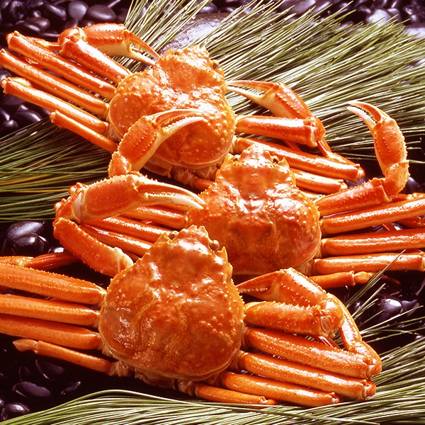【身入り抜群のA級品!】カナダ産ボイルズワイガニ姿・約750g×3尾 冷凍ズワイ蟹