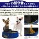 オートマチックペットフィーダー(青) 大切なペットに、飼い主不在時でも給餌 - 縮小画像2