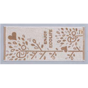 オーガニック綿フェイスタオル エコライフ 5枚セット - 拡大画像