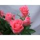 ピンクのバラ花束のミニブーケ - 縮小画像4