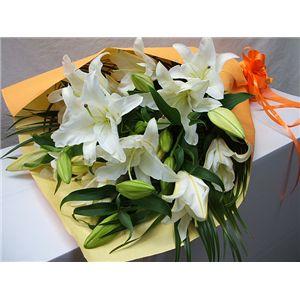 【母の日限定ギフト・5月5日12時で受付終了】カサブランカの花束 花(ツボミ)総数15輪以上 - 拡大画像