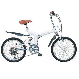 MYPALLAS(マイパラス) 折り畳み自転車 M-10-W 20インチ ホワイト系 【マウンテンバイク】 - 拡大画像