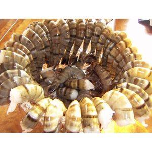 築地魚河岸から直送、魚河岸仲買人厳選の食材ブラックタイガー (1.8kg) - 拡大画像