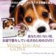 犬のためのDVD / あなたがいないときのために - 縮小画像1