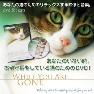 猫のためのDVD / あなたがいないときのために  - 拡大画像