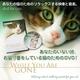 猫のためのDVD / あなたがいないときのために  - 縮小画像1