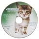 猫のためのDVD / あなたがいないときのために  - 縮小画像5