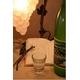 酵素飲料 ビオマックス - 縮小画像3