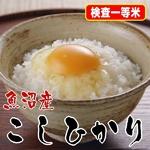 【味と価格に自信アリ!】厳選一等米!魚沼産こしひかり玄米10Kg(5kg×2)