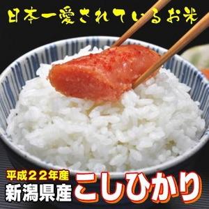 【平成22年産 味と価格に自信アリ!】新潟県産こしひかり 白米10Kg(5kg×2) - 拡大画像