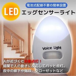 エッグセンサーライト 配線不要 自動点灯 玄関照明にも - 拡大画像