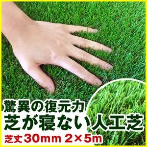 復帰型人工芝 パークシア・プレミアム V字型 芝丈30mm 2m×5m
