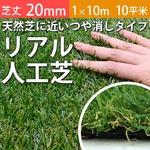 人工芝 パークシアエコノミー 1m×10m×20mm