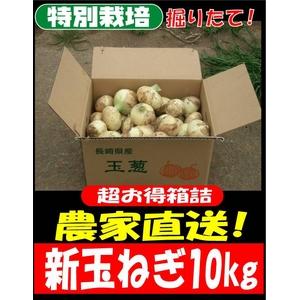 特別栽培農家直送「新玉ねぎ」10kg - 拡大画像