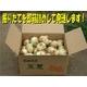 特別栽培農家直送「新玉ねぎ」10kg - 縮小画像2