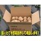 特別栽培農家直送「新じゃがいも」M〜2Lサイズ 30kg(10kg箱×3) - 縮小画像2