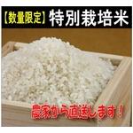 """【数量限定】特別栽培農家から""""ひのひかり""""新米直送10kg"""
