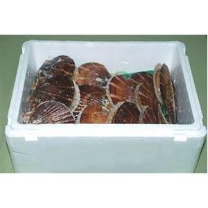 噴火湾産 活ホタテ 2年貝(3kg)+3年貝(3kg)食べ比べセット - 拡大画像