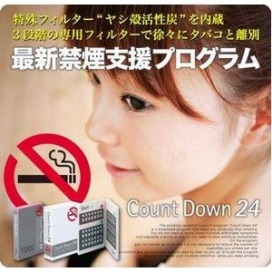 カウントダウン24 - 拡大画像