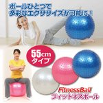 フィットネスボール 【ブルー(青)】直径約55cm エアーポンプ/ピン付き
