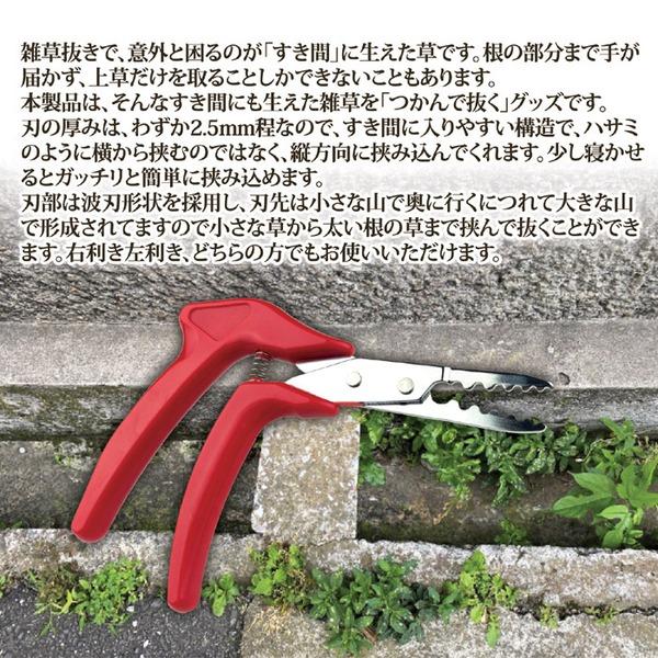 草抜くぞう/草取り道具 【右利き左利き対応】 刃の厚み2.5mm 波刃形状 〔ガーデニング 庭いじり 園芸〕2