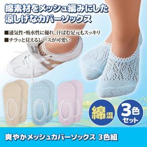 爽やかメッシュカバーソックス/靴下 【3色組】 適応サイズ:22~25cm 綿・ポリエステル