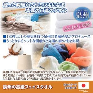 泉州の高級フェイスタオル 【藍色】 綿100% 日本製