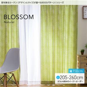 窓を飾るカーテン ナチュラル BLOSSOM(ブロッサム) 遮光2級 (MZ) 幅150cm×丈205cm(2枚組) アイボリー - 拡大画像