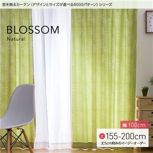 窓を飾るカーテン ナチュラル BLOSSOM(ブロッサム) 遮光2級 (MZ) 幅100cm×丈195cm(2枚組) グリーン - 拡大画像