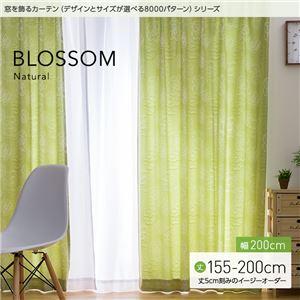 窓を飾るカーテン(デザインとサイズが選べる8000パターン)ナチュラル BLOSSOM(ブロッサム) 遮光2級 (MZ) 幅200cm×丈180cm(1枚) グリーン - 拡大画像