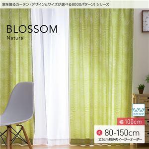 窓を飾るカーテン ナチュラル BLOSSOM(ブロッサム) 遮光2級 形態安定 (MZ) 幅100cm×丈120cm(2枚組) グリーン - 拡大画像