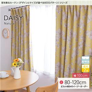 窓を飾るカーテン ナチュラル DAISY(デイジー) 遮光2級 形態安定 (AL) 幅100cm×丈115cm(2枚組) イエロー - 拡大画像