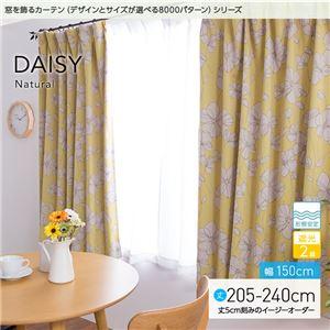 窓を飾るカーテン ナチュラル DAISY(デイジー) 遮光2級 形態安定 (AL) 幅150cm×丈220cm(2枚組) イエロー - 拡大画像