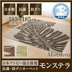 国産デザインラグマット(抗菌・防ダニ・アトピー協会推奨カーペット)モンステラ 185×185cm グリーン