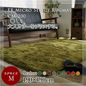 EXマイクロセレクトラグマットCM200 190×190cm (TOS) マスタード - 拡大画像
