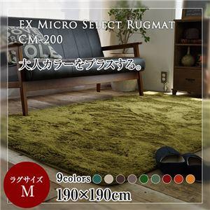 EXマイクロセレクトラグマットCM200 190×190cm (TOS) モスグリーン - 拡大画像