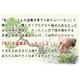 【通信講座】藤田茂男の流儀 〜盆栽上達法〜 [DVD&テキスト] - 縮小画像1
