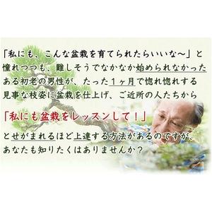 【通信講座】藤田茂男の流儀 〜盆栽上達法〜 [テキスト&DVD] - 拡大画像