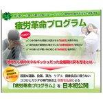 【照喜名式】慢性疲労改善法~1日5分から始める、簡単エクササイズ~[DVD]