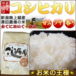 【平成22年産新米】 澤田農場の新潟県上越産コシヒカリ玄米 25kg(5kg×5袋) - 拡大画像