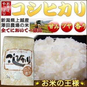 【お試しに!平成28年産】澤田農場の新潟県上越産コシヒカリ白米5kg
